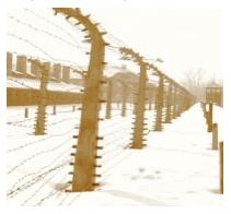 Auschwitz-Birkenau Fences